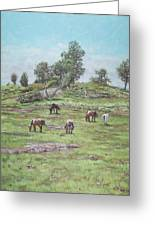 New Forest Lyndhurst Hampshire Greeting Card