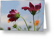 New Jersey Wildflowers In The Wind Greeting Card