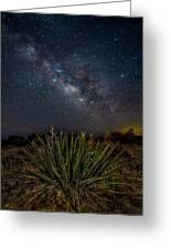 New Mexican Night Greeting Card