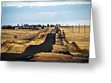 New Mexico Road Greeting Card