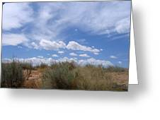 New Mexico Sand Grass Sky Greeting Card