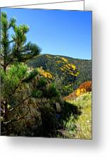 New Mexico Wilderness Greeting Card