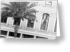 New Orleans Windows - Black And White Greeting Card