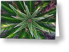 New Palm Leaves Greeting Card