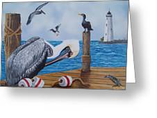 New Point Pelican Greeting Card