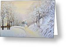 New Snow In Hunting Hills Greeting Card by Douglas Ann Slusher