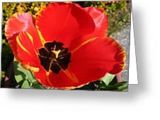 New Spring Beginnings Greeting Card