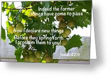 New Things Scripture Greeting Card