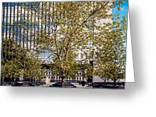 Trees On Fed Plaza Greeting Card by Mike Evangelist