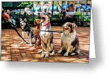 New York City Dog Walking Greeting Card