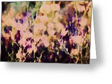 New York Wildflowers Xiii Greeting Card