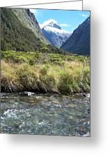 New Zealand Landscape 2 Greeting Card