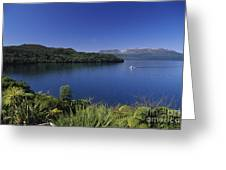 New Zealand, Rotorua Greeting Card