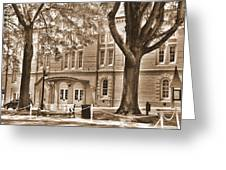 Newberry Opera House Newberry Sc Sepia Greeting Card