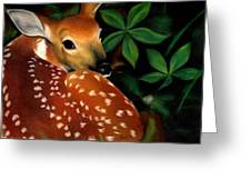 Newborn Greeting Card
