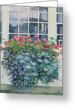Newburyport Window Greeting Card