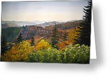 Newfound Gap Greeting Card by Shirley Braithwaite Hunt