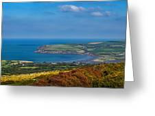 Newport Bay Greeting Card