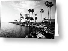 Newport Beach Jetty Greeting Card by Paul Velgos