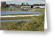 Newport Estuary And Nearby Businesses Greeting Card