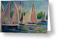 Newport Regatta  Greeting Card