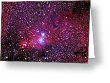 Ngc 2264 The Christmas Tree Cluster In Monoceros Greeting Card