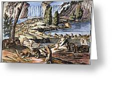 Niagara Falls: Beavers, 1715 Greeting Card