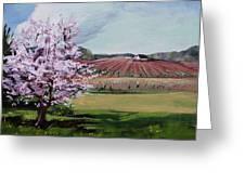 Niagara Vineyards Spring Greeting Card