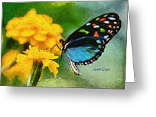 Nice Butterfly Greeting Card