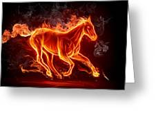 Nice Horse 3d Greeting Card