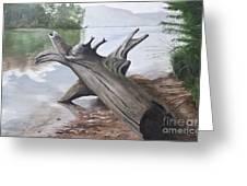 Nickajack Driftwood Greeting Card