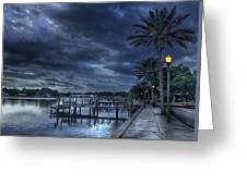 Night At The Bayou Greeting Card