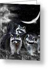 Night Bandits Greeting Card
