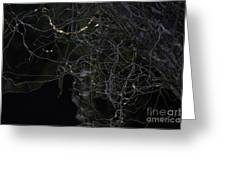 Night. Branch Out. Greeting Card