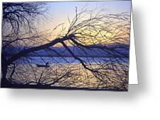 Night Fishing In Barr Lake Colorado Greeting Card