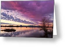 Night Gives Way To Dawn Greeting Card