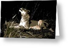 Night Lioness Greeting Card