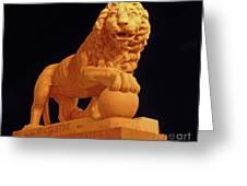 Night Of The Lion Greeting Card