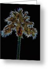 Night Palm Greeting Card