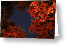 Night Sky By The Campfire Greeting Card by Gray  Artus