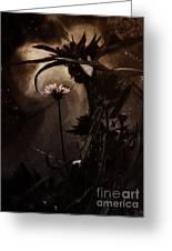 Nightflower Greeting Card