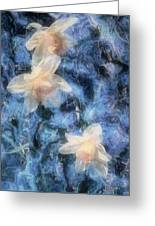 Nighttime Narcissus Greeting Card