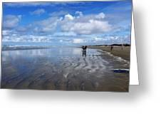Ninety Mile Beach New Zealand Greeting Card