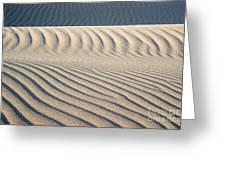 Nipomo Dunes Greeting Card by Ron Hoggard