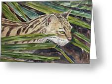 Nirvana - Ocelot Greeting Card