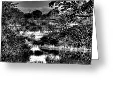 Nisqually Ponds Greeting Card