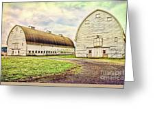 Nisqually Twin Barns Greeting Card