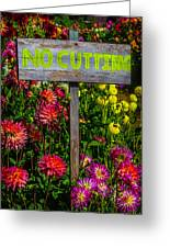 No Cutting Sign In Garden Greeting Card