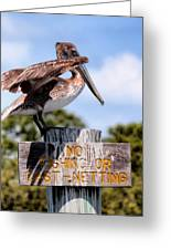 No Fishing Baby Pelican Greeting Card