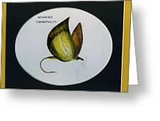 No Hackel Comparadum Greeting Card